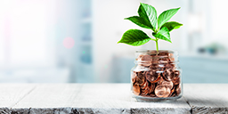 Plant Growing Out Of Coin Jar On Table In Office -  Investing /